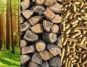 Si se sustituye la energía convencional por la biomasa